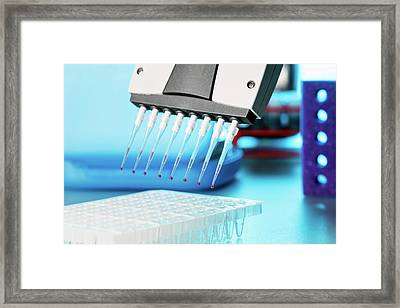 Multi Pipette Framed Print