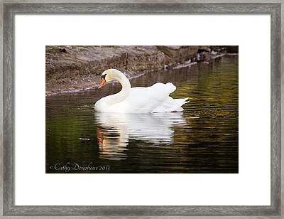 My Prince Framed Print by Cathy Donohoue