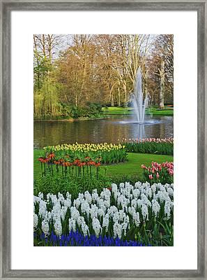 Netherlands, Lisse Framed Print by Jaynes Gallery