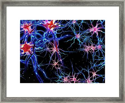 Neural Network Framed Print by Maurizio De Angelis