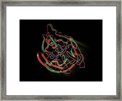 Neuraminidase Framed Print by Hipersynteza
