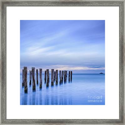 Old Jetty Pilings Dunedin New Zealand Framed Print