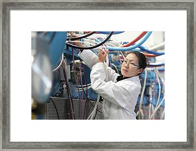 Optical Products Plant Framed Print