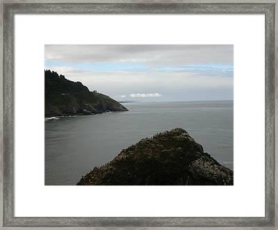 Oregon Coastline Framed Print by Yvette Pichette
