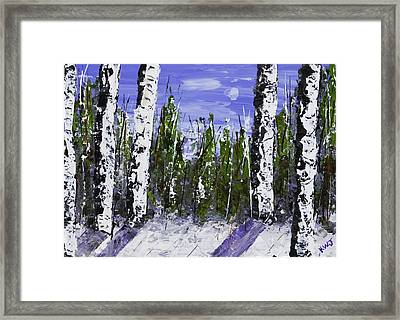 Painting Of White Birch Trees In Winter Framed Print by Keith Webber Jr
