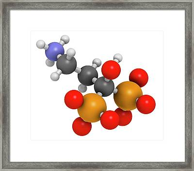 Pamidronic Acid Osteoporosis Drug Framed Print