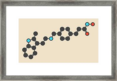 Panobinostat Cancer Drug Molecule Framed Print by Molekuul