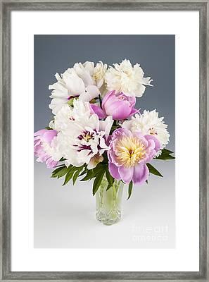 Peony Flower Bouquet Framed Print by Elena Elisseeva