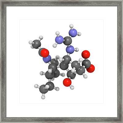 Peramivir Influenza Drug Molecule Framed Print by Molekuul