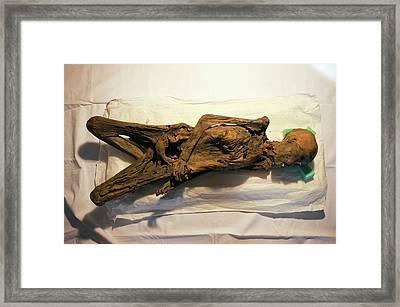 Peruvian Mummy Framed Print by Marco Ansaloni / Science Photo Library