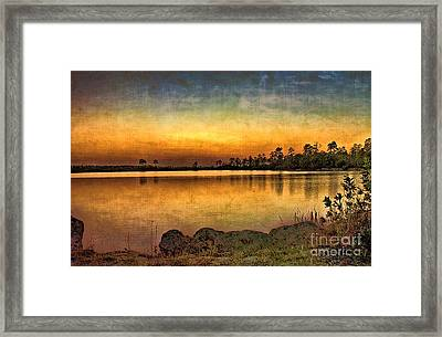 Framed Print featuring the photograph Pine Glades Lake by Anne Rodkin
