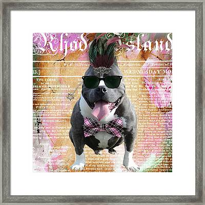 Pitbull Bowtie Collection Framed Print