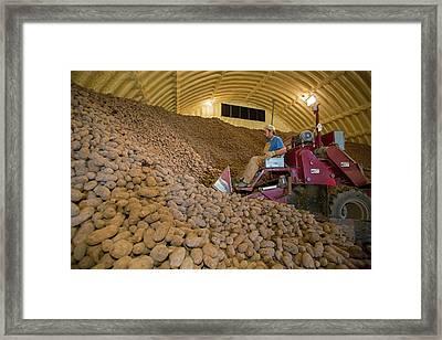Potato Farming Framed Print by Jim West
