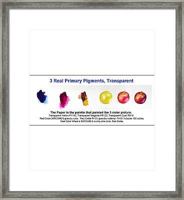 3 Primary Pigments - Apple Framed Print