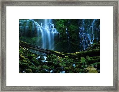 Proxy Falls Oregon Framed Print