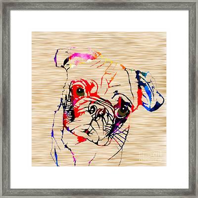 Pug Framed Print