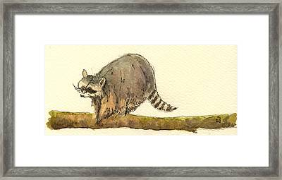 Raccoon Framed Print by Juan  Bosco