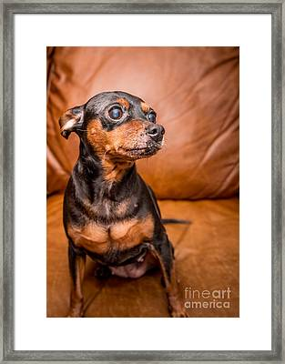 3 Resized Framed Print