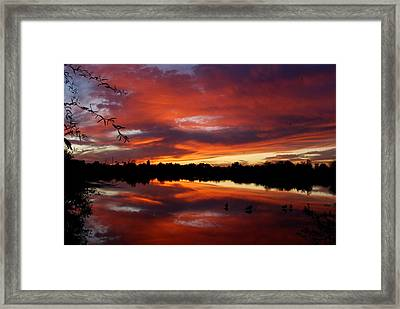 Framed Print featuring the photograph Riparian Sunset by Tam Ryan