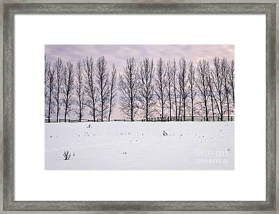 Rural Winter Landscape Framed Print by Elena Elisseeva