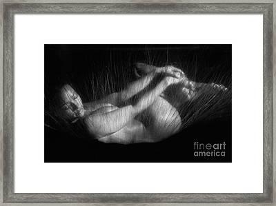 Sas 2 Framed Print