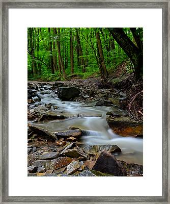 Serenity Framed Print by Frozen in Time Fine Art Photography