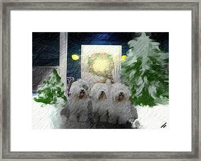 3 Sheepdogs Framed Print