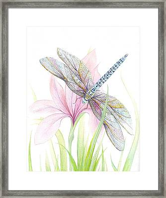 Sheer Wings / Sold Framed Print