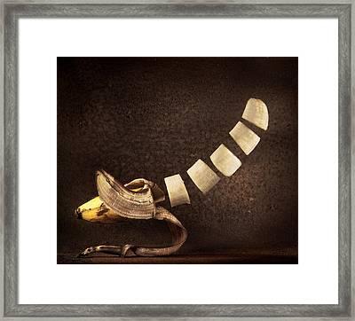 Sliced Up Banana Framed Print by Dirk Ercken