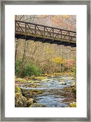Smoky Mountain Stream 3 Framed Print