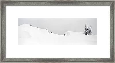 Snow Drift  Framed Print by Tom Cuccio
