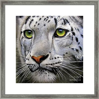 Snow Leopard Framed Print by Jurek Zamoyski
