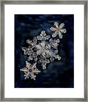 3 Snowflakes For The Price Of One Framed Print