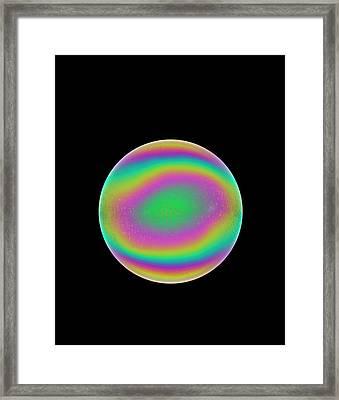 Soap Bubble Framed Print by David Parker