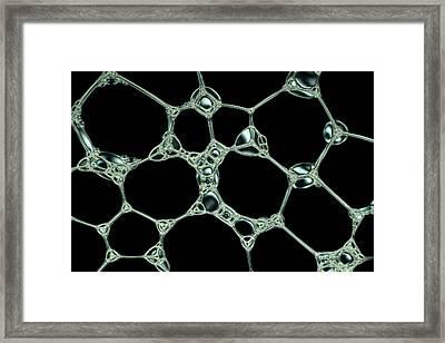 Soap Bubble Foam Framed Print