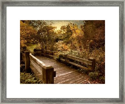 Splendor Bridge Framed Print by Jessica Jenney