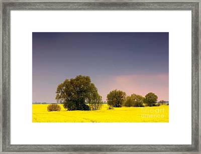 Spring Landscape Framed Print by Michal Bednarek