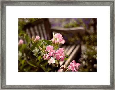 Spring Repose Framed Print by Jessica Jenney