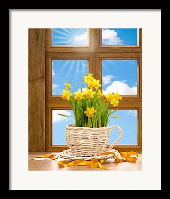 Basket Pot Framed Prints