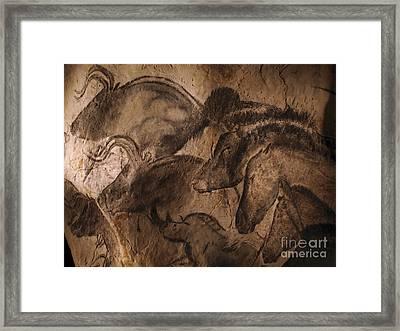 Stone-age Cave Paintings, Lascaux Framed Print by Javier Trueba/MSF