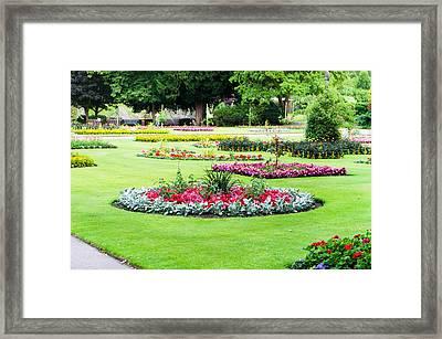 Summer Garden Framed Print by Tom Gowanlock
