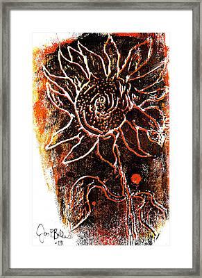 Sunflower  Framed Print by Jon Baldwin  Art