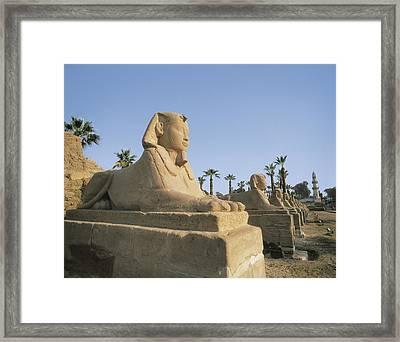 Temple Of Amon - Ra. Egypt. Quena Framed Print