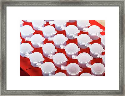 Test Tubes Framed Print