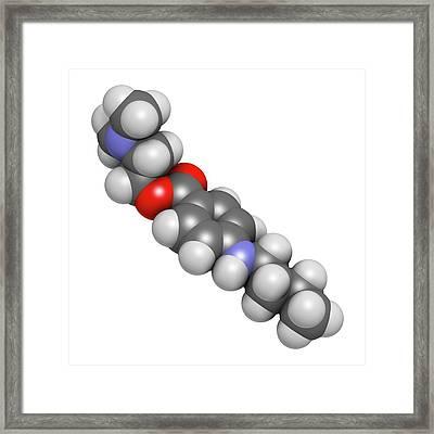 Tetracaine Local Anesthetic Drug Molecule Framed Print