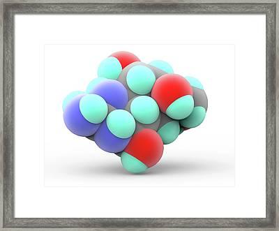 Tetrodotoxin Ttx Neurotoxin Molecule Framed Print
