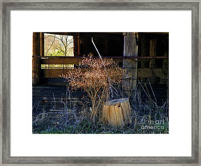 Texas To The Bone Framed Print by Joe Jake Pratt