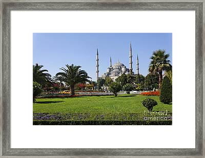The Blue Mosque Istanbul Framed Print