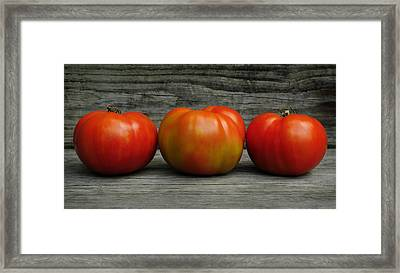 3 Tomatoes Framed Print by Luke Moore