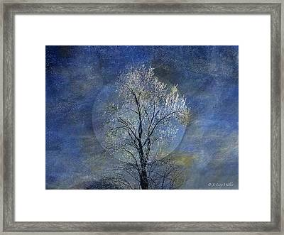 Tree Of Ice Framed Print
